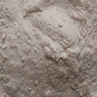 arabic gum in powder